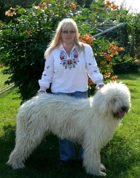 Bokorszeri Cudar s majitelkou Melindou Talpai